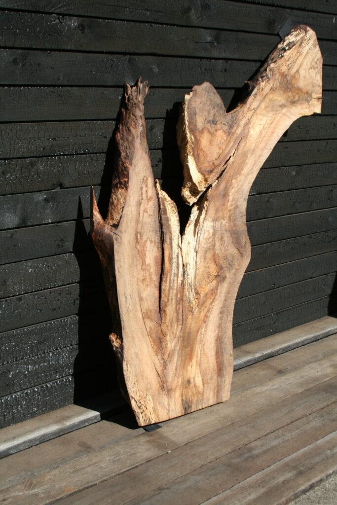 Trüffelbuch Holz für Feinschmecker